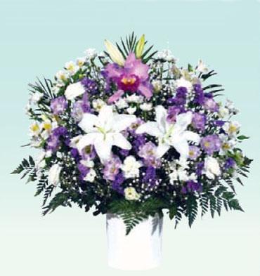 洋花生花7 : 色合い白/紫 : サイズW700 x H750 x D300(mm)